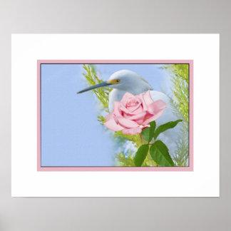 Egret nevado y color de rosa rosado póster