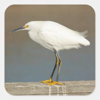 Egret on the Dock Sticker