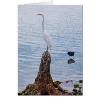 Egret Perch Card