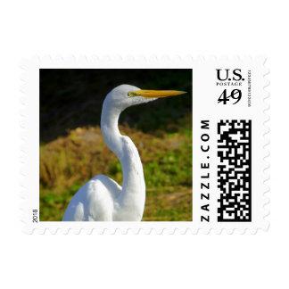 Egret Postage Stamp