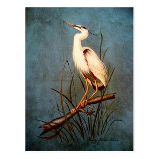 Egret Postcard