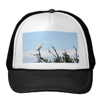 egret que se coloca en la pintura del árbol