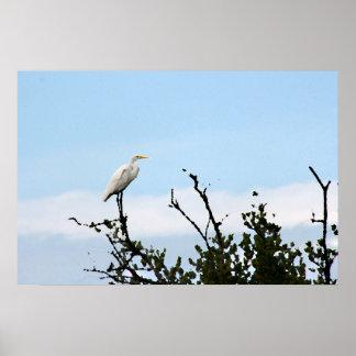 egret que se coloca en la pintura del árbol póster