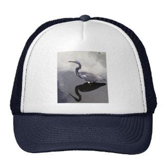 Egret reflejado gorro de camionero