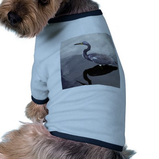 Egret reflejado ropa de perros