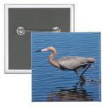 Egret rojizo pin