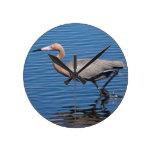 Egret rojizo reloj de pared
