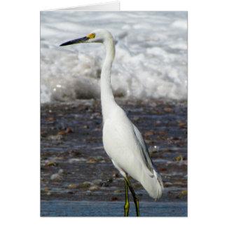 Egret Standing Tall Card