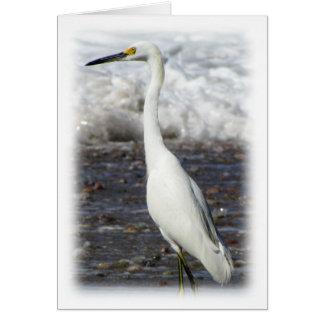 Egret Standing Tall; Customizable Card
