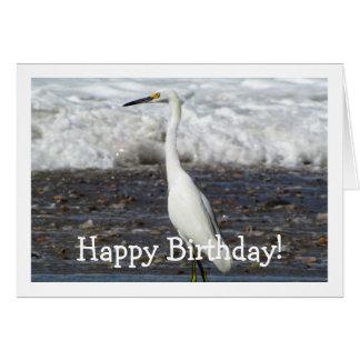 Egret Standing Tall; Happy Birthday Card