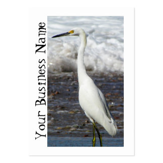 Egret Standing Tall Large Business Cards (Pack Of 100)