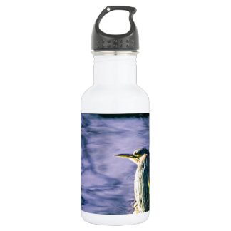 Egret verde