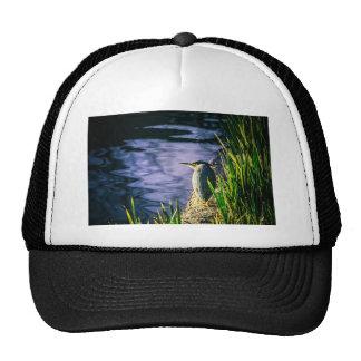 Egret verde gorras de camionero