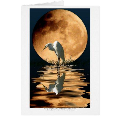 Egret y Saludo-tarjeta de oro del arte de la fauna Tarjeta De Felicitación