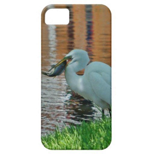 Egret y su captura iPhone 5 Case-Mate fundas