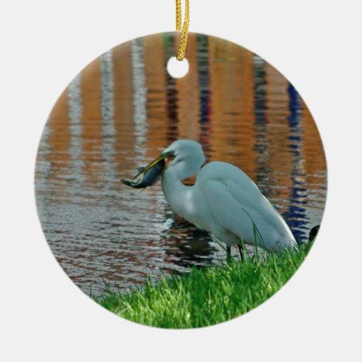 Egret y su captura ornato