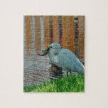 Egret y su captura puzzle