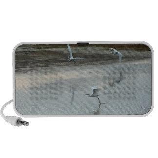 Egrets At Dawn Doodle Speaker