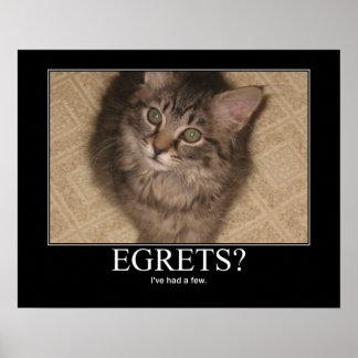 Egrets? Cat Artwork Poster
