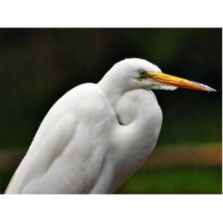 Egrets Cut Outs