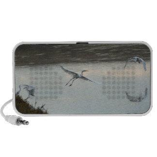 Egrets de los humedales en el altavoz del Doodle d