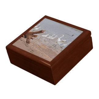 Egrets & Driftwood Gift Box