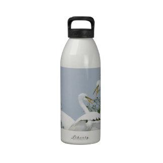 Egrets en duelo botallas de agua