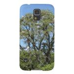 Egrets en un árbol carcasas para galaxy s5