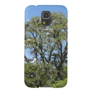 Egrets en un árbol funda de galaxy s5
