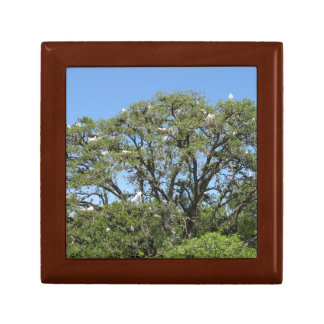 Egrets in a Tree giftbox Gift Boxes