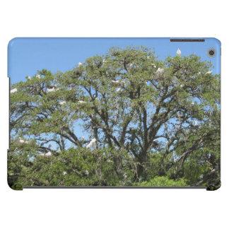 Egrets in a Tree iPad Air Case
