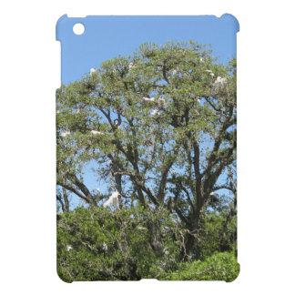 Egrets in a Tree iPad Mini Cases