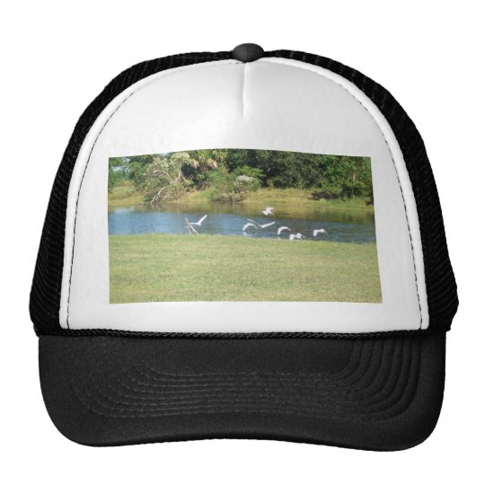 Egrets in Flight Trucker Hat