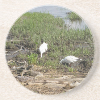Egrets in the Marsh Beverage Coasters