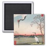 Egrets japoneses imán de nevera