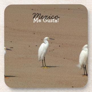 Egrets Loitering on Beach Beverage Coaster