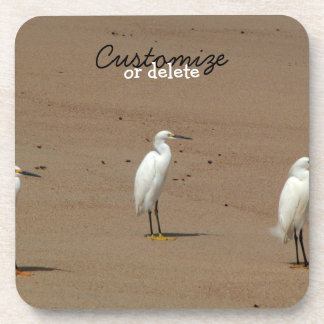 Egrets Loitering on Beach Drink Coaster