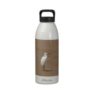 Egrets que callejean en la playa botellas de beber