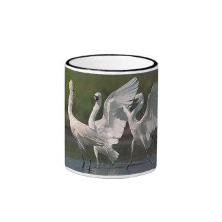 Egrets rojizos taza de dos colores
