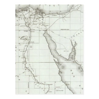 Egyopt and Palestine Postcard