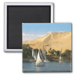 Egypt, Aswan, Nile River, Felucca sailboats, 2 2 Inch Square Magnet