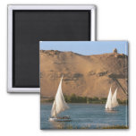 Egypt, Aswan, Nile River, Felucca sailboats, 2 Inch Square Magnet