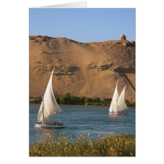 Egypt, Aswan, Nile River, Felucca sailboats, Greeting Card