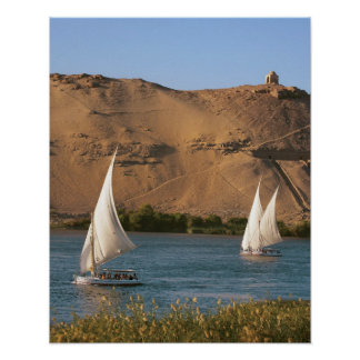 Egypt, Aswan, Nile River, Felucca sailboats, Poster