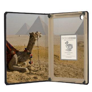 Egypt, Cairo. A lone camel gazes across the iPad Mini Retina Covers