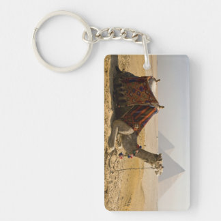 Egypt, Cairo. A lone camel gazes across the Double-Sided Rectangular Acrylic Keychain
