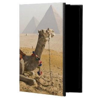 Egypt, Cairo. A lone camel gazes across the iPad Air Cover