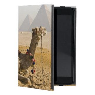 Egypt, Cairo. A lone camel gazes across the iPad Mini Cover