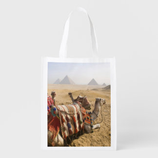Egypt, Cairo. Resting camels gaze across the 2 Grocery Bag