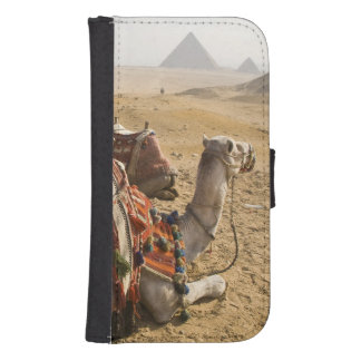 Egypt, Cairo. Resting camels gaze across the 2 Phone Wallet